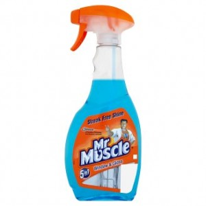 Mr Muscle 5in1 Window and Glass Płyn-rozpylacz 500ml